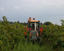 Domaine de l'Aqueduc - Saint-Maximin - Découverte du travail dans les terres