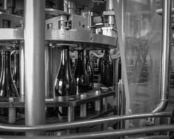 Domaine de l'Aqueduc - Saint-Maximin - Mise en bouteille en noir et blanc
