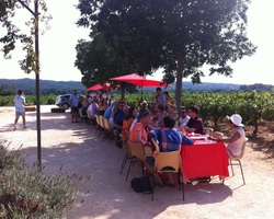 Domaine de l'Aqueduc - Saint-Maximin - Le pique-nique